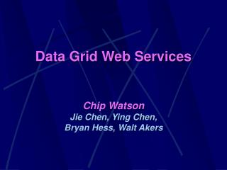 Data Grid Web Services