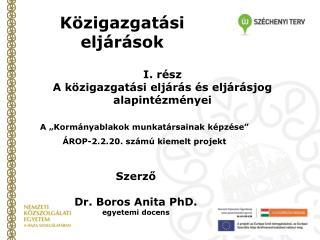 Szerző Dr. Boros Anita PhD.  egyetemi docens