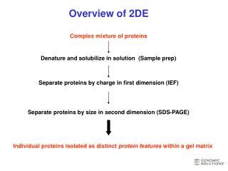 Overview of 2DE