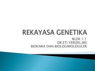 REKAYASA GENETIKA