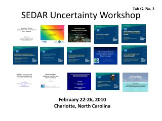 SEDAR Uncertainty Workshop