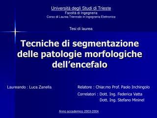 Tecniche di segmentazione delle patologie morfologiche dell�encefalo