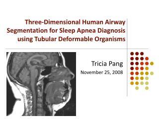 Tricia Pang November 25, 2008