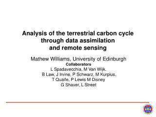 Analysis of the terrestrial carbon cycle through data assimilation  and remote sensing