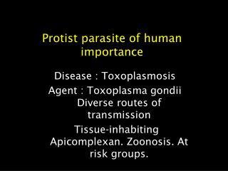 Protist parasite of human importance