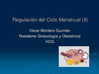 Regulación del Ciclo Menstrual (II)