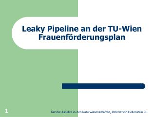 Leaky Pipeline an der TU-Wien Frauenförderungsplan