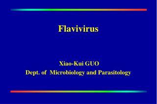 Flavivirus