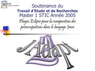 Soutenance du  Travail d'Etude et de Recherches Master 1 STIC Année 2005