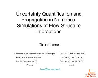 Uncertainty Quantification and Propagation in Numerical Simulations of Flow-Structure Interactions