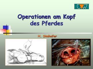 Operationen am Kopf des Pferdes