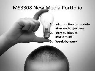 MS3308 New Media Portfolio