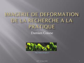 IMAGERIE DE DEFORMATION DE LA RECHERCHE A LA PRATIQUE