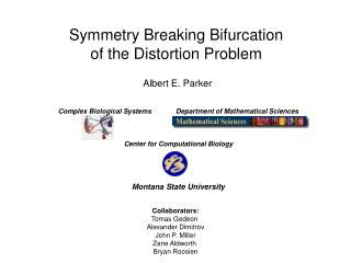 Symmetry Breaking Bifurcation of the Distortion Problem