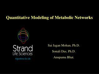 Quantitative Modeling of Metabolic Networks