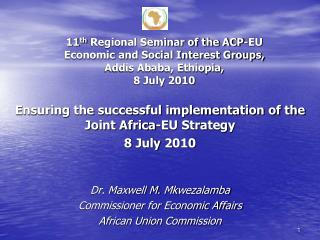 Ensuring the successful implementation of the Joint Africa-EU Strategy 8 July 2010