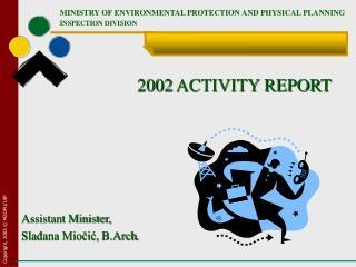 2002 ACTIVITY REPORT