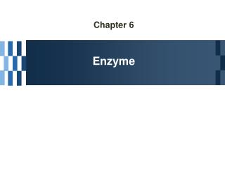 Chapter 6 Enzyme
