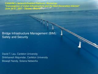 Bridge Infrastructure Management (BIM):  Safety and Security