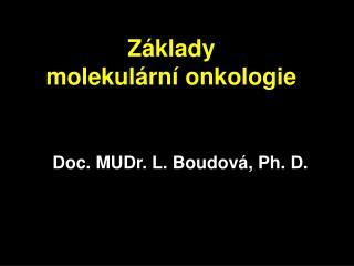 Z klady  molekul rn  onkologie
