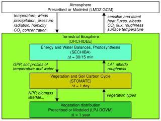 Terrestrial Biosphere  (ORCHIDEE)