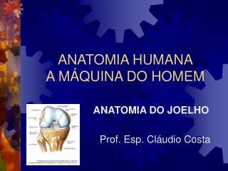 ANATOMIA HUMANA A M�QUINA DO HOMEM