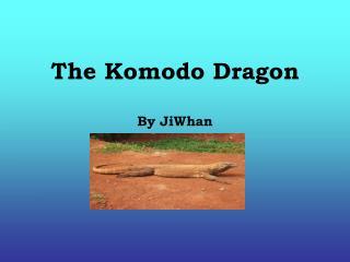 The Komodo Dragon By JiWhan