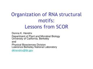 Organization of RNA structural motifs: Lessons from SCOR