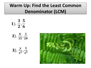 Warm Up: Find the Least Common Denominator (LCM)
