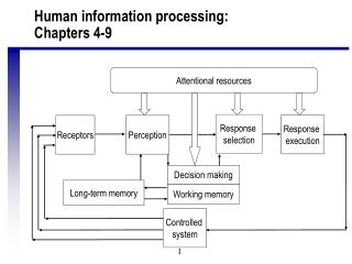 Human information processing: Chapters 4-9