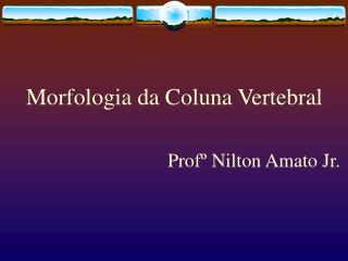 Morfologia da Coluna Vertebral Prof� Nilton Amato Jr.