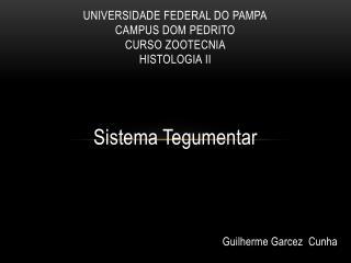 Universidade Federal do Pampa Campus Dom Pedrito Curso Zootecnia Histologia II