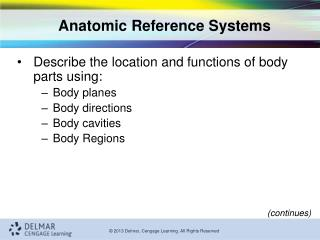 Anatomic Reference Systems