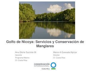Golfo de Nicoya: Servicios y Conservación de Manglares