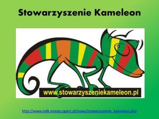 Stowarzyszenie Kameleon