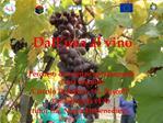 Dall uva al vino