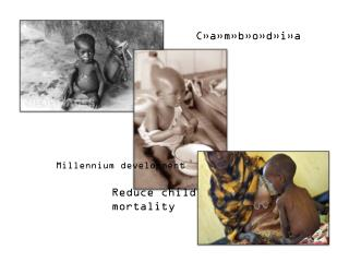 Millennium development  Goal 4:  Reduce child 	   mortality