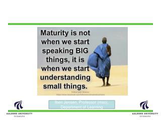 T he maturity  model