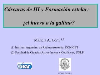 Mariela A. Corti  1,2