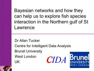 Dr Allan Tucker Centre for Intelligent Data Analysis Brunel University West London UK