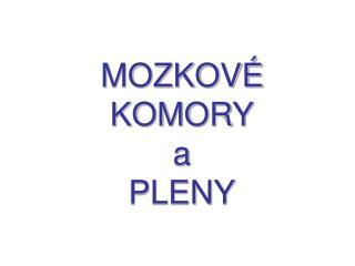 MOZKOV� KOMORY a PLENY