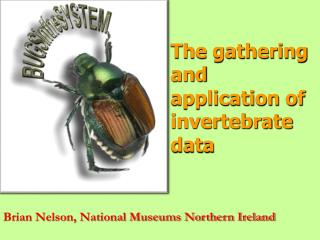 The  gathering and  application of invertebrate  data