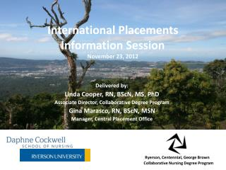 International Placements Information Session November  23, 2012