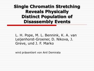 Single Chromatin Stre t ching Reveals Physically  Distinct Population of  Dis as sembly Events