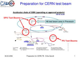 Preparation for CERN test beam