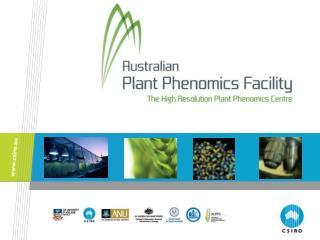 Plant phenomics
