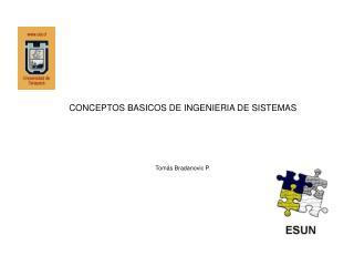 CONCEPTOS BASICOS DE INGENIERIA DE SISTEMAS    Tom s Bradanovic P.