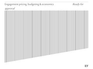 Engagement pricing, budgeting & economics                                   Ready for approval
