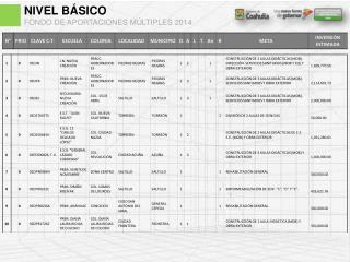 NIVEL BÁSICO FONDO DE APORTACIONES MÚLTIPLES 2014
