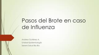 Pasos del Brote en caso de Influenza